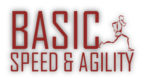BSAG Red Slider Logo